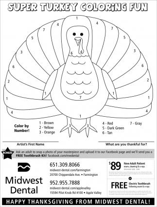 Super Turkey Coloring Fun