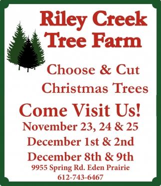 Choose & Cut Christmas Trees, Riley Creek Tree Farm