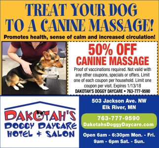 Treat Your Dog to a Canine Massage!
