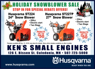 Holiday Snowblower Sale