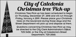 Christmas Tree Pick-up