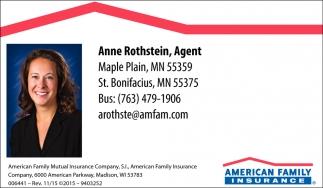 Anne Rothstein, Agent