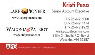 Senior Account Executive