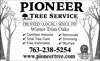 Winter Trim Oaks