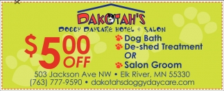 Doggy Day Care, Hotel & Salon