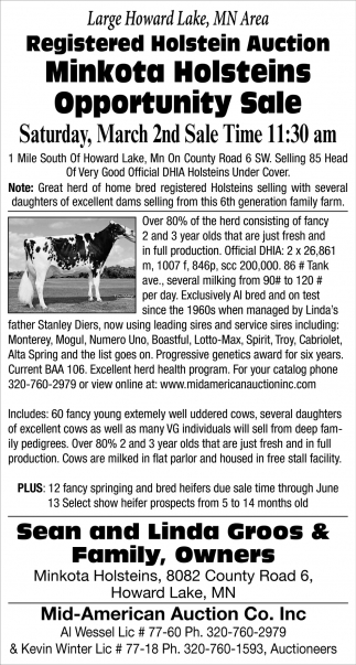 Large Howard Lake, MN Area Registered Holstein Auction