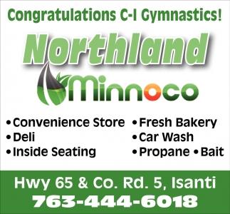 Congratulations C-I Gymnastics!