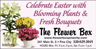 Celebrate Easter with Blooming Plants & Fresh Bouquets