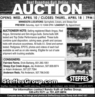 Beef Breeding Bull Online Auction